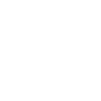 Logotipo-Estrella_Blanca