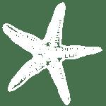 Logotipo-Estrella_Blanca1